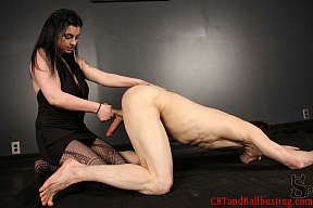 Femdoms doing cock and ball torture - CBT and Ballbusting!